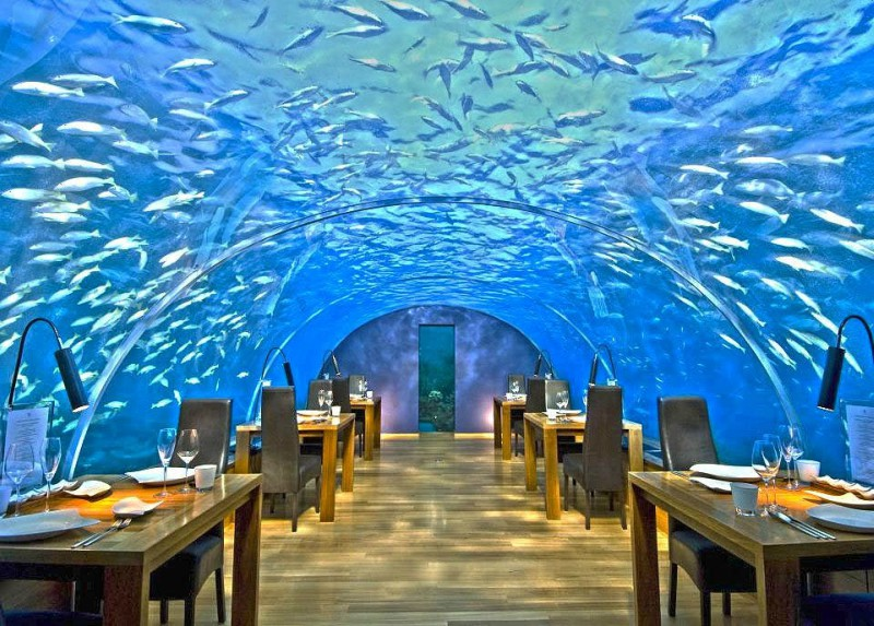 Ithaa's Underwater Restaurant at the Conrad Rangali Maldives Island resort